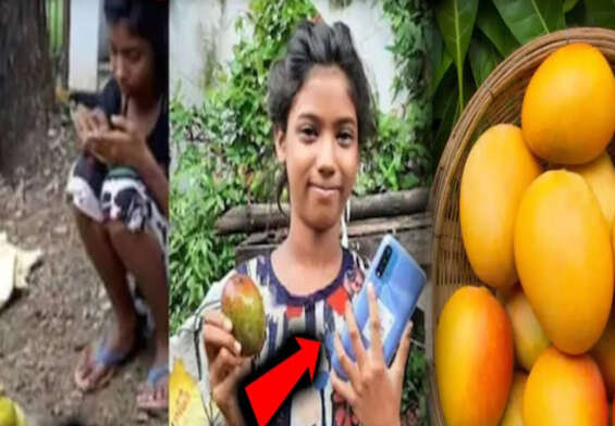 Child sells 12 mangoes for Rs 1.2 lakh
